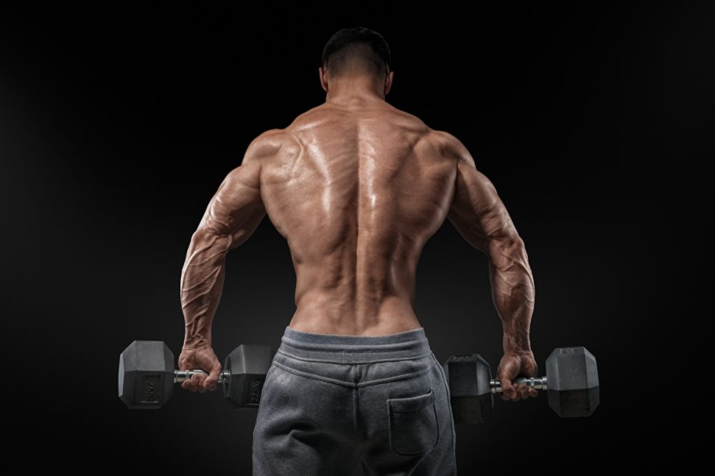 Top 10 Supplements Bodybuilders Take
