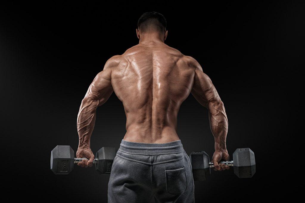 Top 10 Supplements Bodybuilders Take
